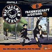 Freundschaft in Gefahr (Die wilden Kerle 8) | Barbara van den Speulhof