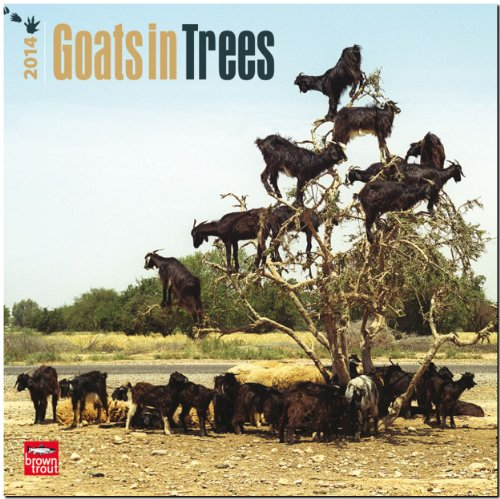 Goats in Trees (Multilingual Edition): Browntrout Publishers: 9781465010506: Amazon.com: Books