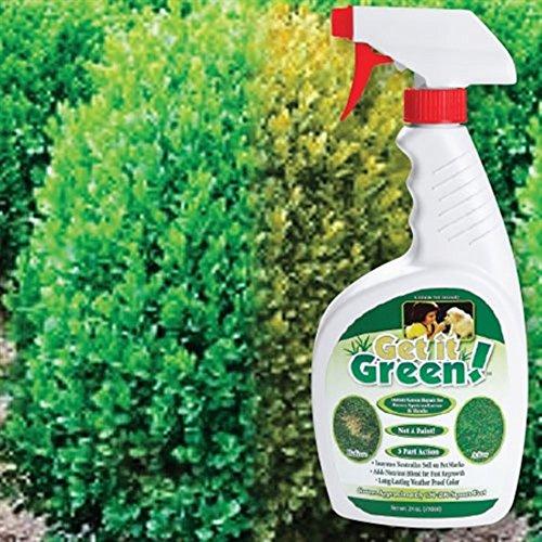 get-it-green-repairs-brown-spots-on-shrubs