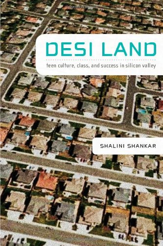 Desi Land: Teen Culture, Class, and Success in Silicon...