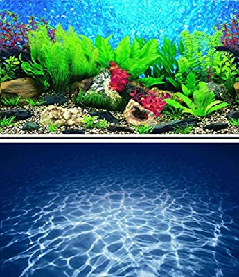"16"" (40cm) Double Sided Scenic Aquarium Background Picture for Fish Tank Reptile and Vivarium ..."