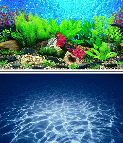 60cm-24-haut-double-face-pour-le-poisson-de-fond-de-lAquarium-de-Tank-Reptile-vivarium-Dcor