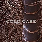 COLD CASE(vister)(DVD付)(在庫あり。)