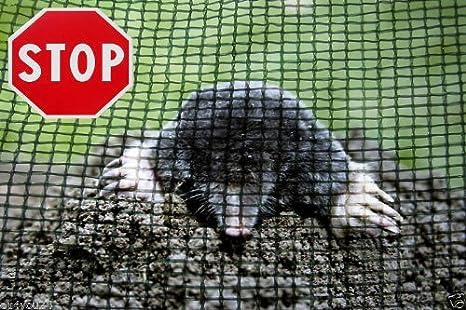300m maulwurfnetz rollrasen rasen maulwurfschutz for Rollrasen anlegen