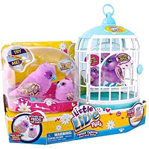 Buy Little Live Pets Owl And Baby Bird With Cage Online At