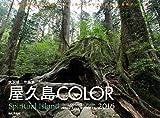 カレンダー2016 屋久島 COLOR (ヤマケイカレンダー2016)