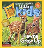 Magazine - National Geographic Little Kids