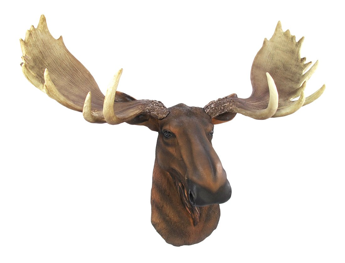 404 squidoo page not found - Fake moose head mount ...
