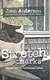 Stretch Marks: Essays for the Unfinished Woman
