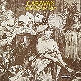 Waterloo Lily  - Caravan