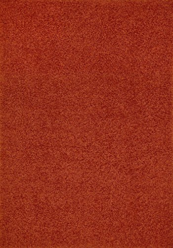 Shaggy Collection Solid Color Shag Area Rugs (Burnt Orange, 5'x7') (4097)