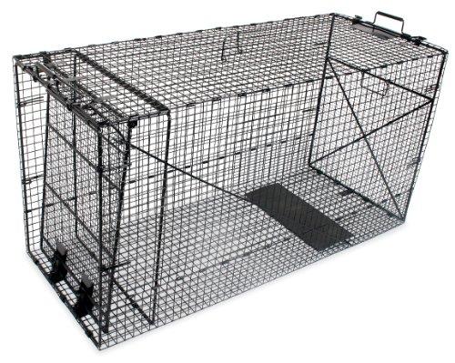 Humane Way Folding Coyote / Dog Trap