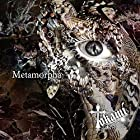 Metamorpha