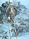 img - for Albinus on Anatomy (Dover Anatomy for Artists) by Bernhard Siegfried Albinus (1989-11-01) book / textbook / text book