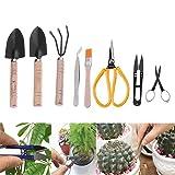 sincerely gift Bonsai Tool Set, Bonsai Trimming Tools Kit Succulent Gardening Tools Set (8 Pieces) (Color: 8 pieces)