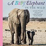 img - for A Baby Elephant in the Wild book / textbook / text book