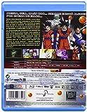 Image de Dragon Ball Z: La Batalla De Los Dioses