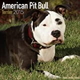img - for American Pit Bull Terrier Calendar - Just American Pit Bull Terriers Calendar - 2015 Wall calendars - Dog Calendars - Monthly Wall Calendar by Avonside book / textbook / text book