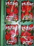 栃木県産【とちおとめ】いちご4パック入り