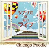 おやすみ♪Chicago Poodle