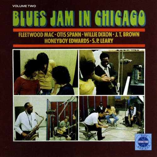 Blues Jam In Chicago - Volume 2