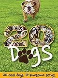 Twenty Dogs