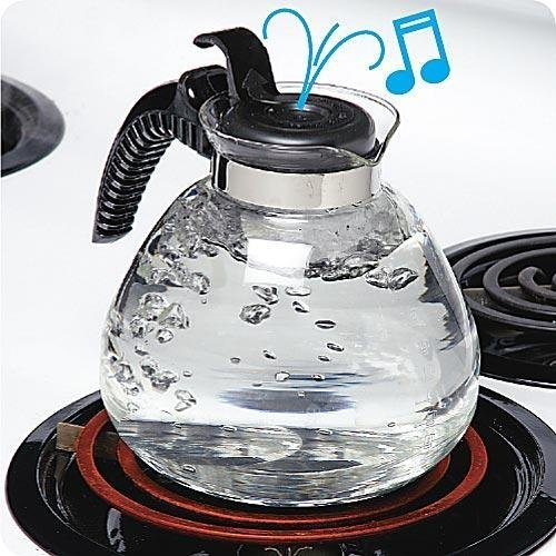 12 Cup Glass Whistling Kettle for Gas & Electric Stoves Budget Priced (Glass Kettle compare prices)
