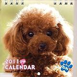 2011 プチCALENDAR わん(2011 プチカレンダー わん)