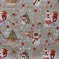 Wachstuch Breite 120 cm Länge wählbar - Weihnachten Zuckerstange Silber - Main abwaschbare Tischdecke Gartentischdecke von DHT-WT120cm - Gartenmöbel von Du und Dein Garten