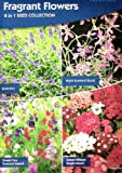 Fragrant Flowers 410 Seeds /4 in 1: Lavender/Stock/Sweet Pea/Sweet William/MULTI-BUY DISCOUNT/Popular plants with delicious scents