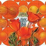 That Lucky Old Sun (Vinyl)
