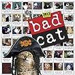 Bad Cat� Wall Calendar 2013