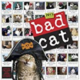 Bad Cat 2013 Wall Calendar