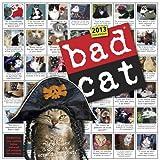 Bad Cat 2013 Wall Calendar