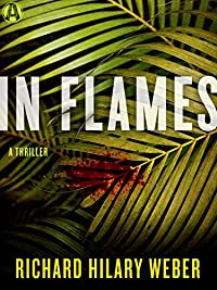In Flames: A Thriller by Richard Hilary Weber ebook deal