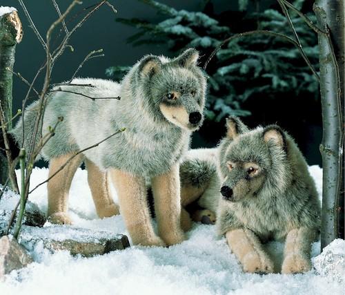 Wölfe von Kösener