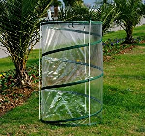 Amazon.com : Outsunny Pop-Up Greenhouse/Plant Cover, Mini, 2-Pack