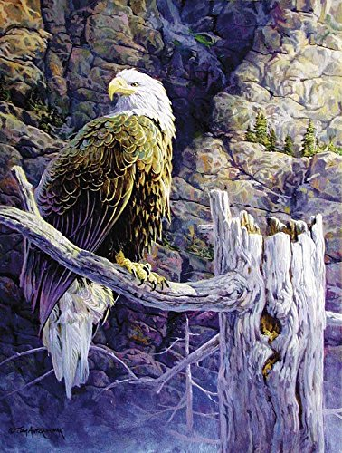Eagle's Rest a 500-Piece Jigsaw Puzzle by Sunsout Inc.