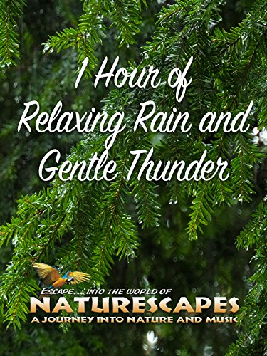 1 Hour of Relaxing Rain and Gentle Thunder on Amazon Prime Instant Video UK