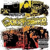 The Best of Goldfinger CD/DVD