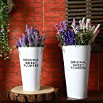 Pastoral Style Shabby Chic Larger Metal Pitcher Vase for Flowers Decoration (2, White)