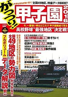 がっつり! 甲子園2016 (にちぶんMOOK)