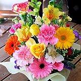 季節のお花おまかせフラワーアレンジメントB(カラフル)「誕生日」「お祝い」「花の産地千葉県館山から」