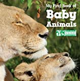 img - for My First Book of Baby Animals (National Wildlife Federation) book / textbook / text book