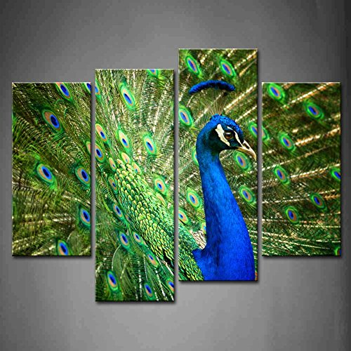 4 Panel Wall Art Blue Proud Male Asian Peacock Shows Off His Fascinating Plumage Painting Pictures Print On Canvas Animal The Picture For Home Modern Decoration Piece (Stretched By Wooden Frame,Ready To Hang)