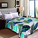 Berry Super Soft New Castle Blanket Double Bed Size 230cm X 250cm Super Lite Super Soft Blanket(Made In India)(Pack Of 1 Piece)