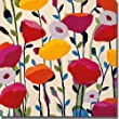 Bursting Poppies by Carrie Schmitt Premium Stretched Canvas (Ready-to-Hang)
