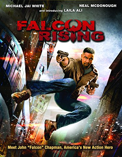 movie review michael jai white�s falcon rising just