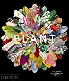 img - for Plant: Exploring the Botanical World book / textbook / text book