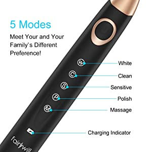 Electric Toothbrush Rechargeable Sonic Toothbrush for Adults, 5 Modes with 4 Brush Heads Waterproof with 2 Min Timer, 4 Hours Fast Usb Charging Portable for Travel Black by Fairywil (Color: FW508Plus, Tamaño: 508Plus)